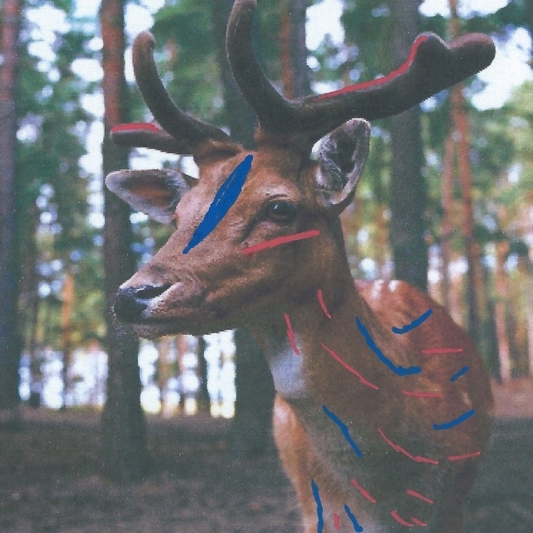 "bad,"" Stag. nice,"" Deer. square - littlefears 
