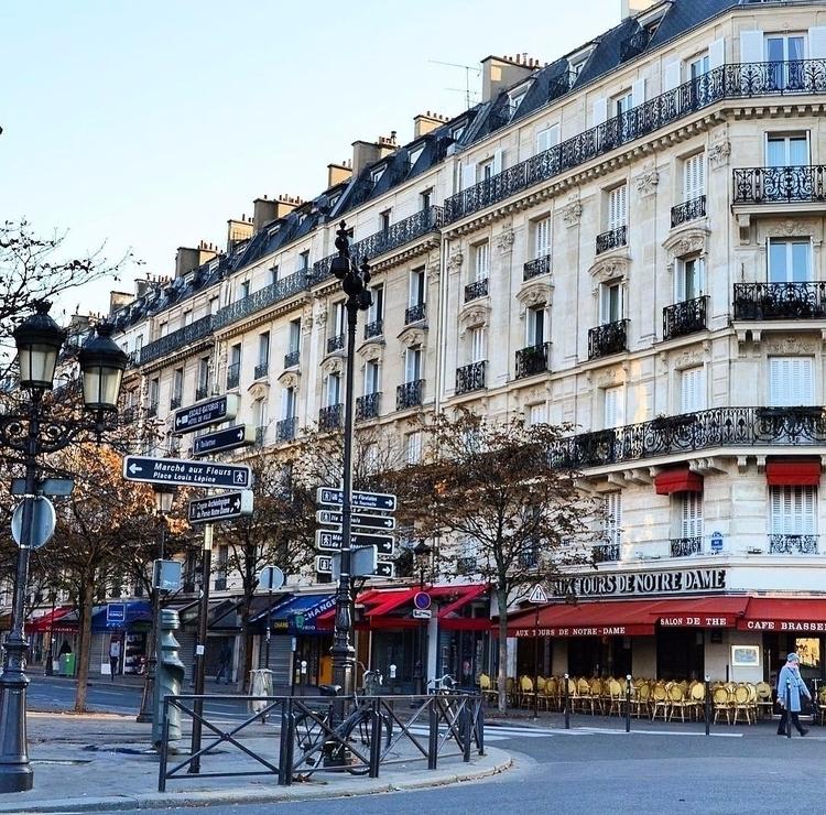 Ile de la Cite, Paris. Paris wo - jimcofer   ello