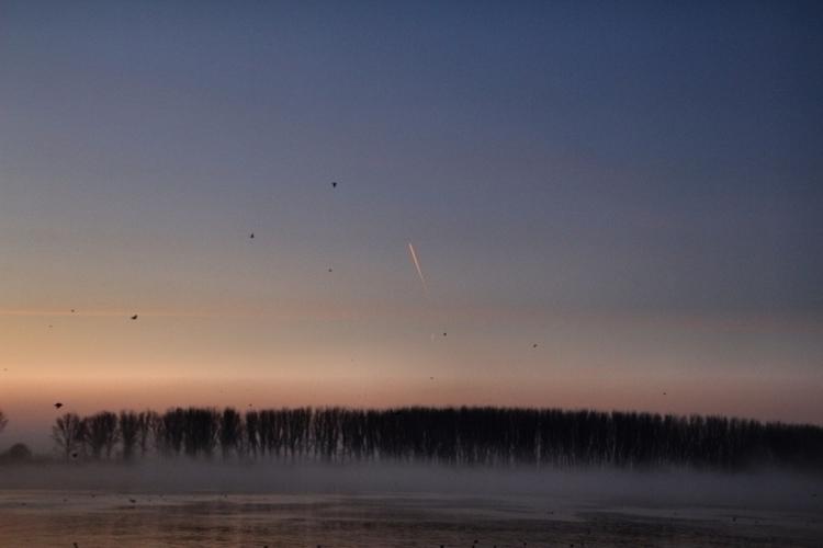 Mystery Beginning ( SUNRISE - sunrise - cornelgin | ello
