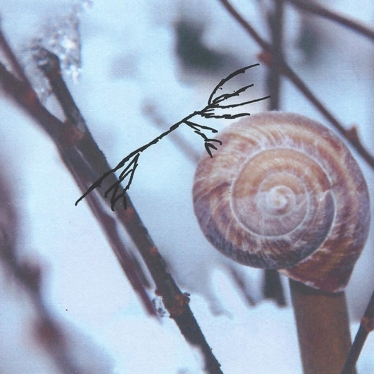 """Met snail today,"" Hydra. asked - littlefears 