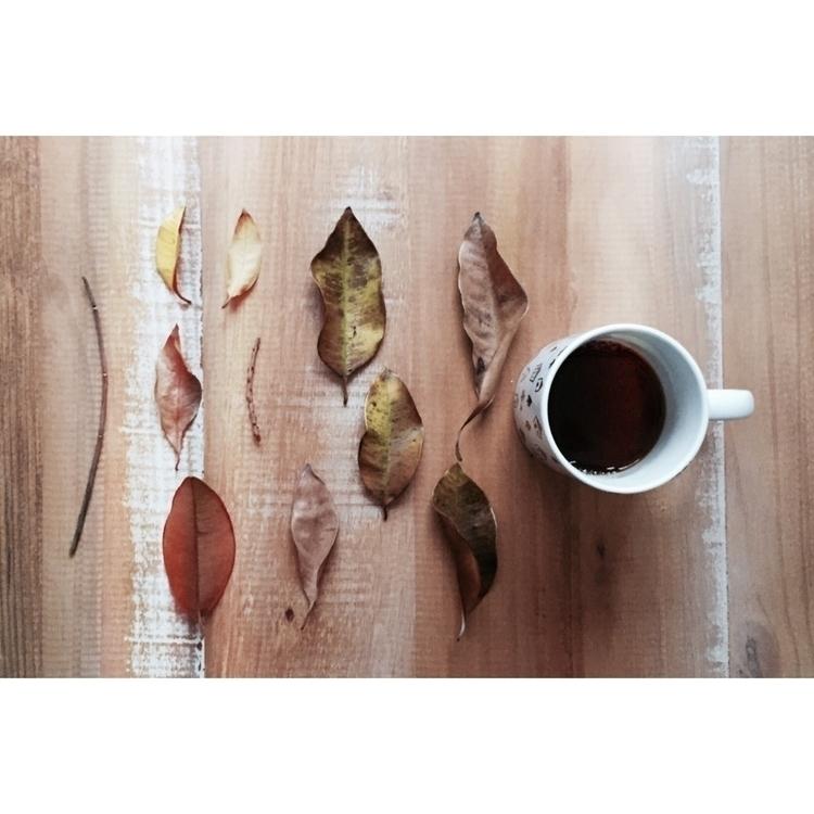 morphological studies autumn, S - etakaki | ello
