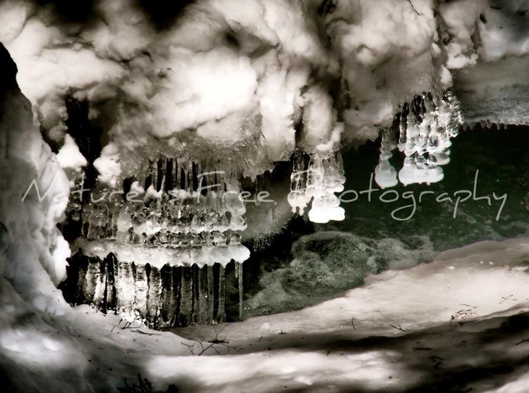 earth heaven, pieces Renard - icicles - natureisfree   ello