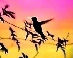 TODAY Today speak flying takes  - poetryinmotion   ello