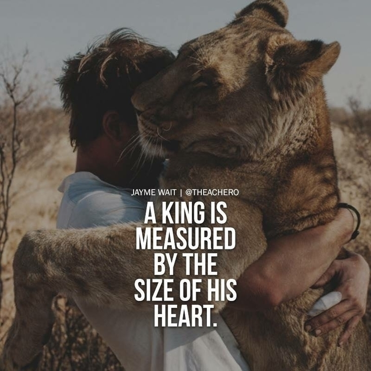 king measured size heart - SundayMorning - esquirephotography | ello