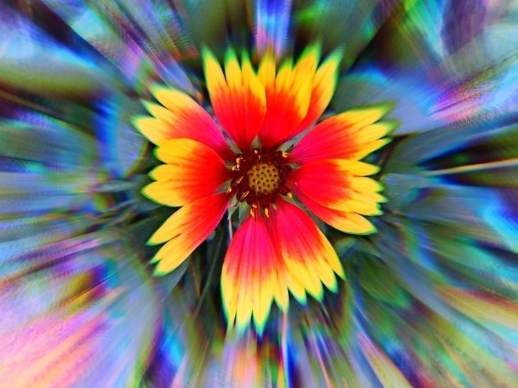 flowers, art - dobromyslova | ello