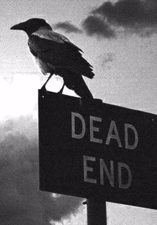 dead, black, white - sam4s | ello