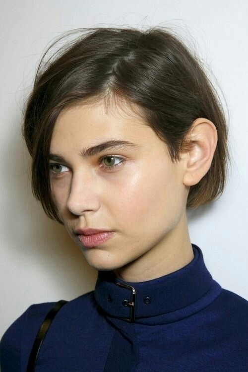 shorthaired, brunette, studio - xxm | ello