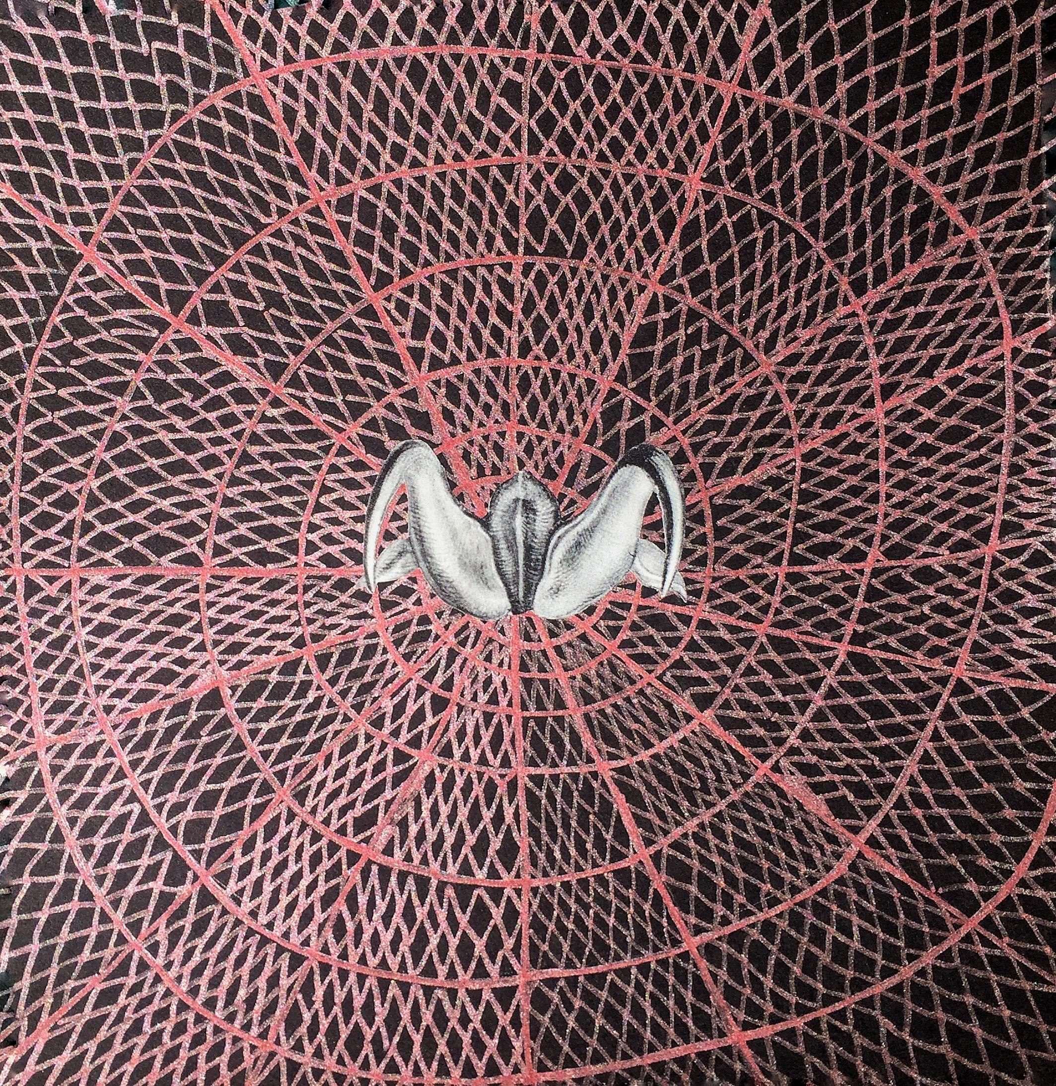 Spider Woman (#linework metalli - arcanememory | ello