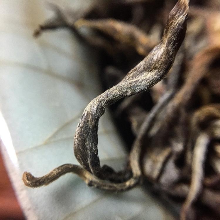 Autumn picked sheng puerh tea X - crimsonlotustea | ello