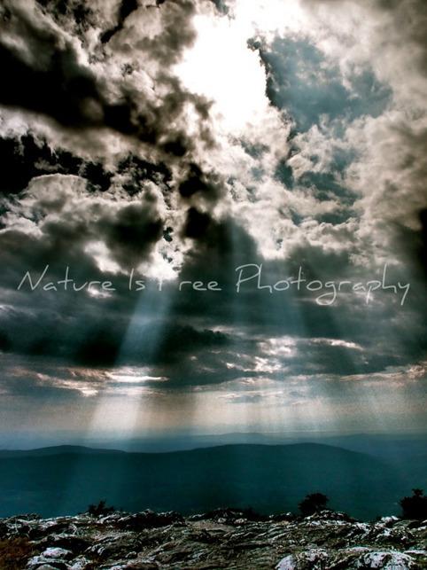 sight blue skies fills joy, bla - natureisfree | ello