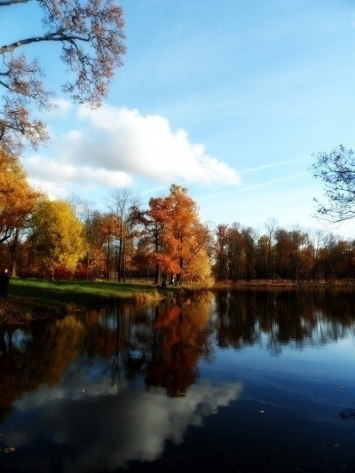 осень в Александровском парке - karina12   ello