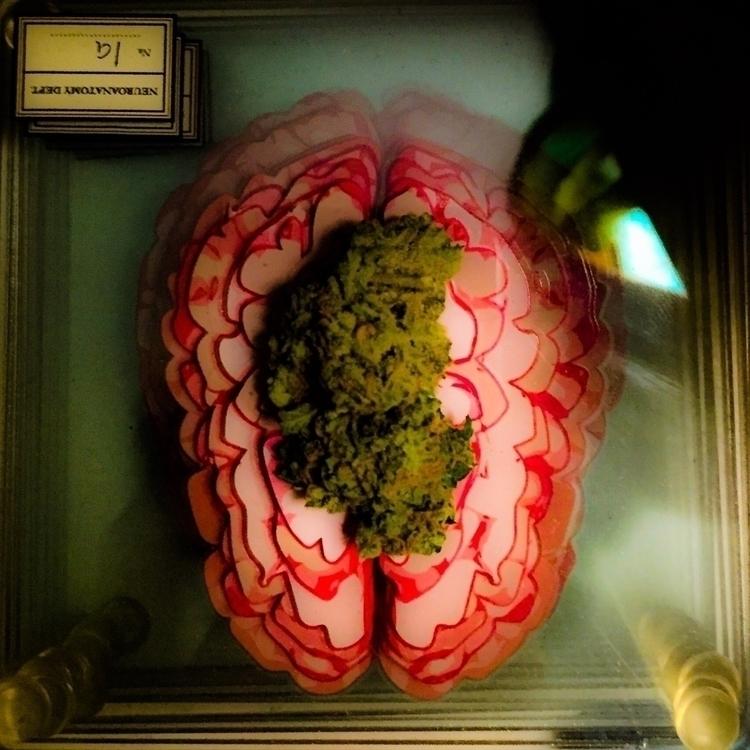 drugs brain - nightcrawler | ello