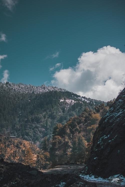 trek easy? worth experience lif - aryamanpathania | ello