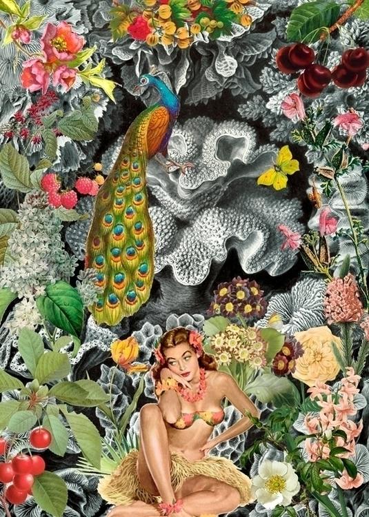 Tropic (2016) lost paradise, pl - gloriasanchez | ello