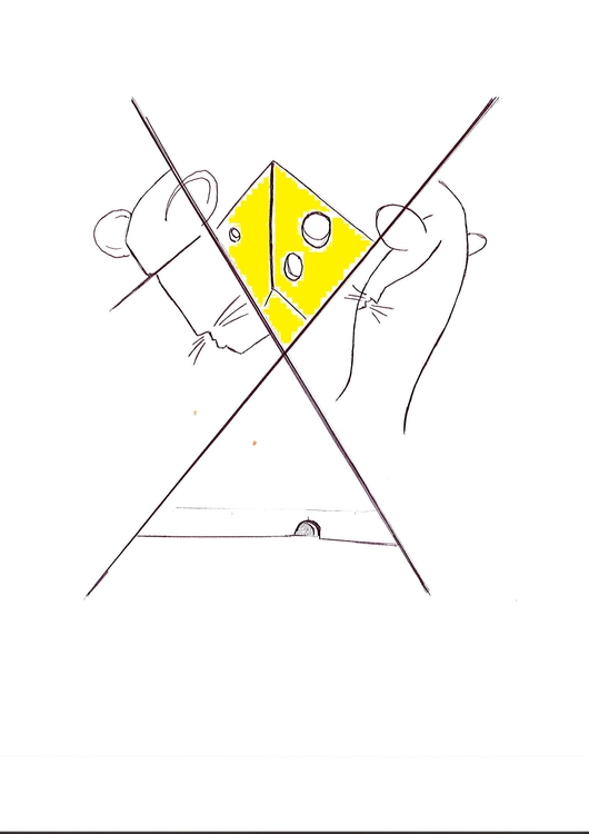 chessy, race, link, ink, views - adilhsaban | ello