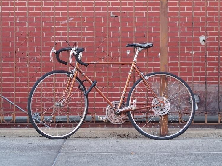 Brick Bronze - NYCSteelponies, BedStuy - nycsteelponies | ello