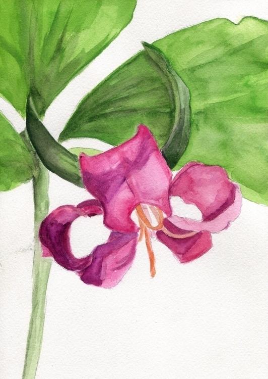Trillium Watercolor Cotton Pape - havekat | ello