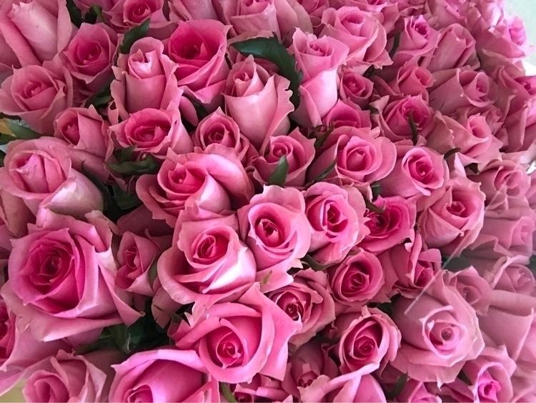rose - etoilestar | ello