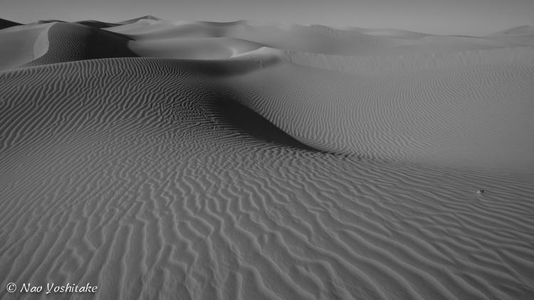 Sahara surf - Nature, landscape - naoyoshitake | ello