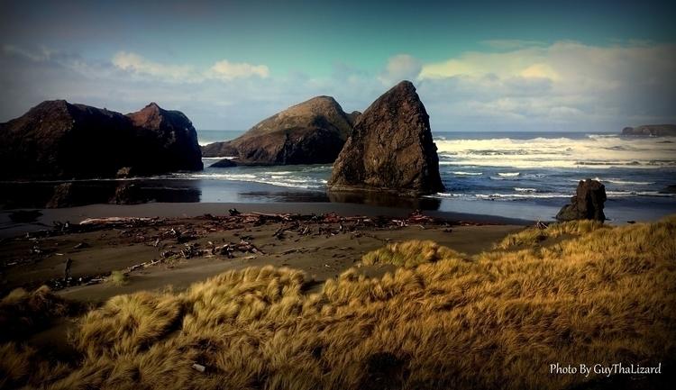 Oregon Coast - guythalizard | ello