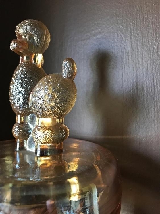 Amber Glass Poodle, Silver Lake - odouglas | ello