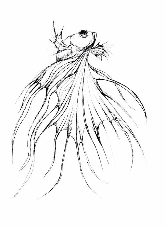 sketchs - s-d-c | ello