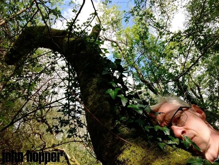 FRIEND TREE - artphotography, forest - johnhopper | ello