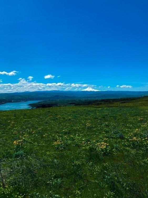 Dalles Mountain Washington - philip_higgins | ello