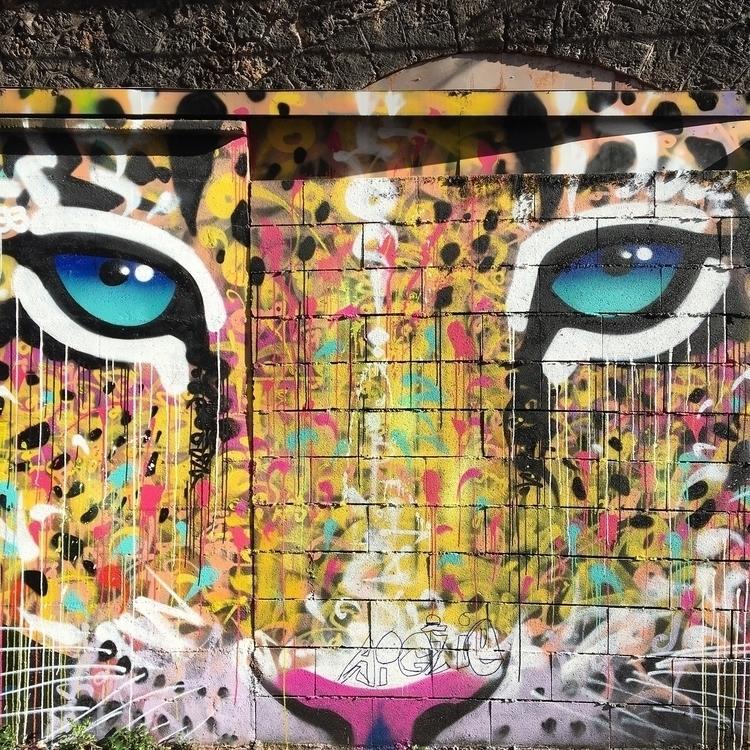 Tiger - street, streetart, streetartist - philippefabry | ello