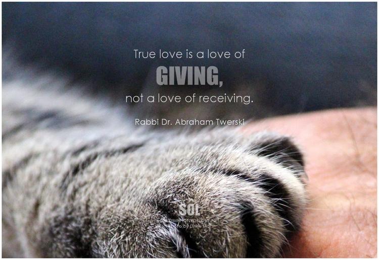 picture quotes Love True love g - symphonyoflove   ello
