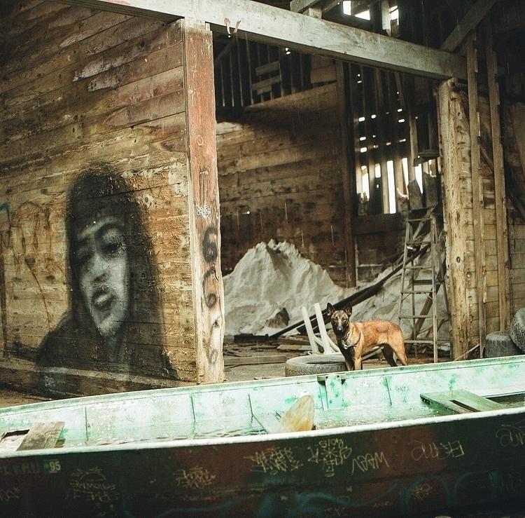 Hiding rain  - bipgraffiti, bip - teetonka   ello