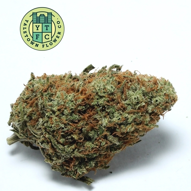 Super Lemon Haze Yaletown Flowe - greenz | ello