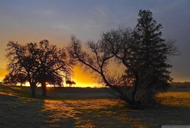 Winter Solstice morning light g - davemrus | ello