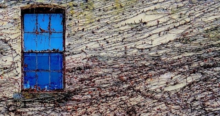 Blue Window Port Townsend, Wash - dave63 | ello