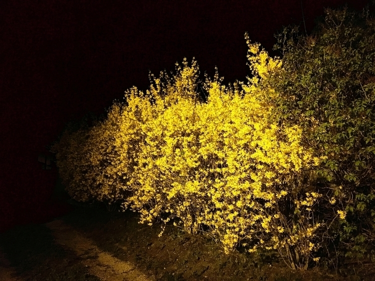 night, photography, yellow, NightPhotography - jkalamarz | ello