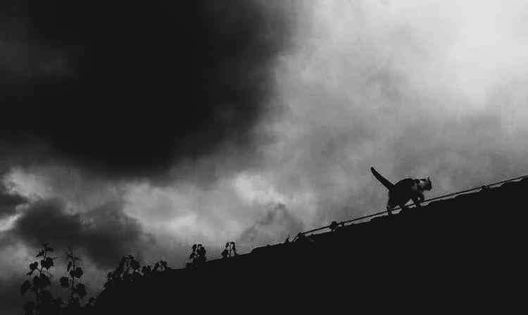 Bevore Storm - bw, blackandwhite - bahnhofskind | ello