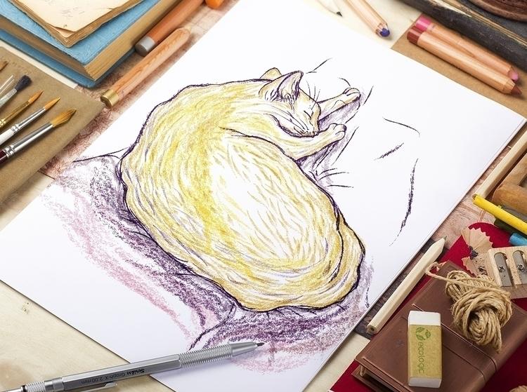 sleeping cat - sketch, drawing, art - zizilka | ello