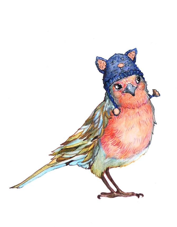 Cheeky bird - 2, birds, robin, cute - ankastan   ello