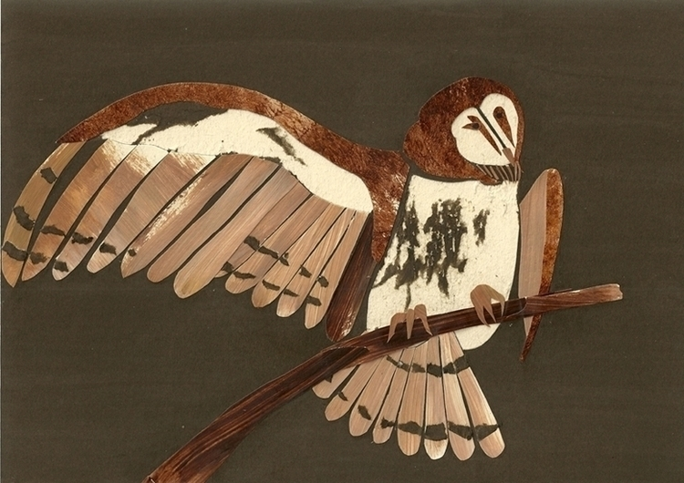 American Barn Owl - illustration - staceyknights | ello