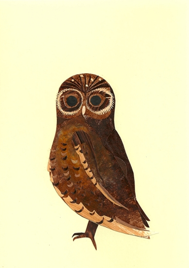 owl - illustration, collage, paper - staceyknights | ello