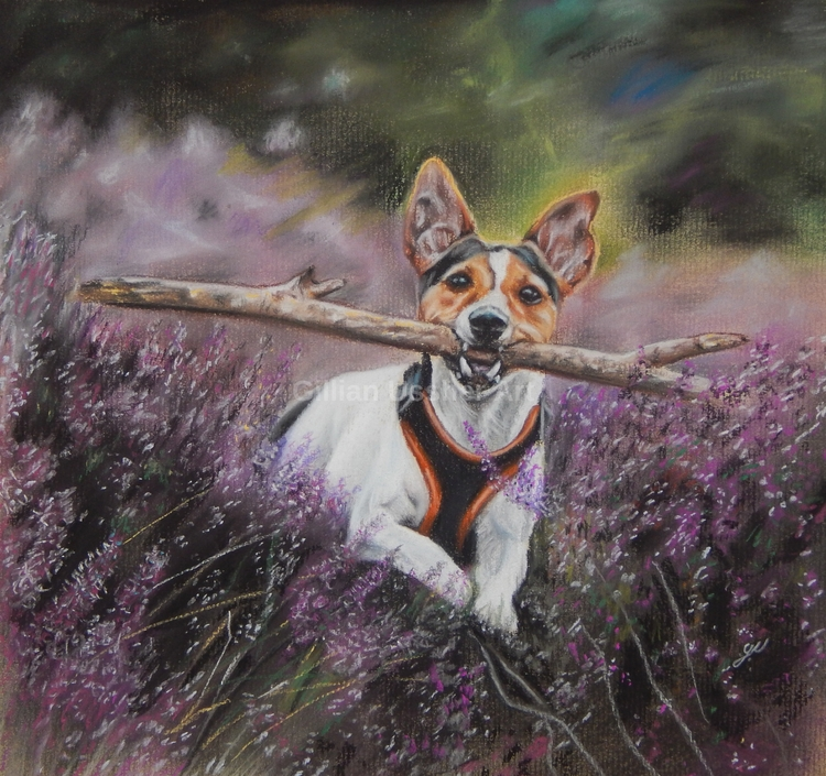 Jack Russell heather - gillianussher | ello