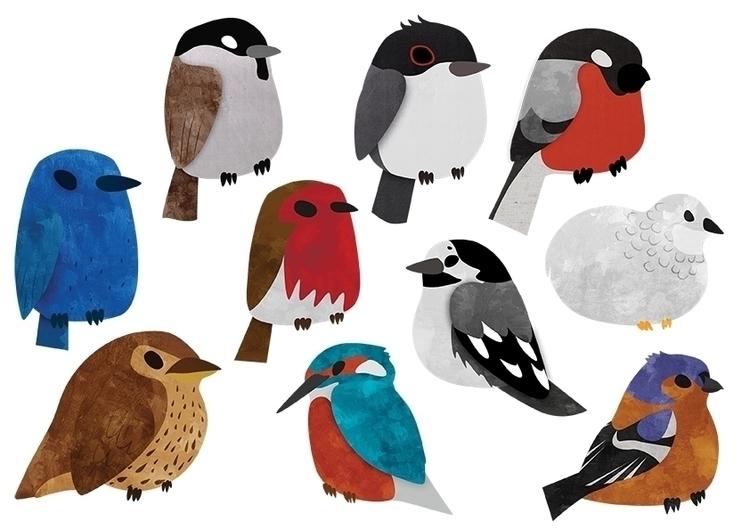Bird Breeds - birds, breeds, vector - clairestamper   ello