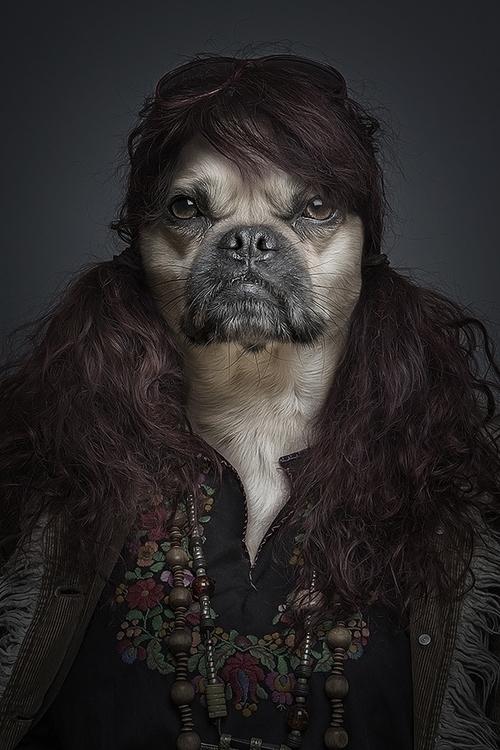 Underdogs - underdogs, dogs - sebastianmagnani | ello