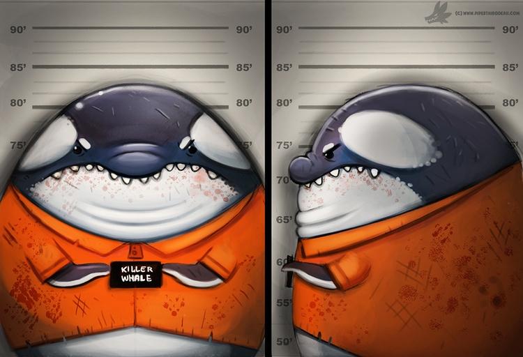 Daily Painting Killer Whale - 968. - piperthibodeau | ello