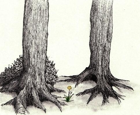 2 Tree - conceptart, drawing, illustration - cheechwiz | ello