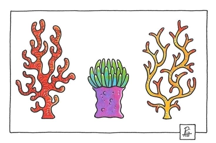 Corals - illustration, painting - marcorizzi-1205   ello