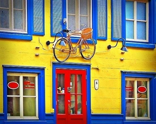 promo bike rental bycicle hangi - leo_brix | ello