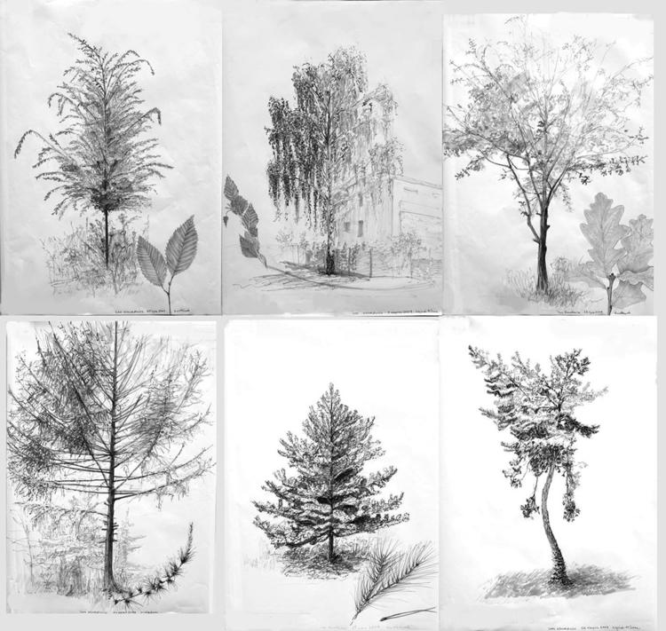 trees Tria Markers 6x B2 - tree - jandraws | ello