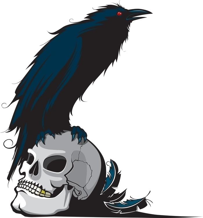 Raven Skull - illustration, cartoon - toonerman | ello