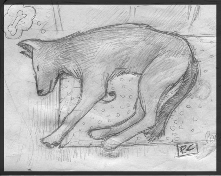 sketch, sketchbook, pencildrawing - cristinaporcelli | ello